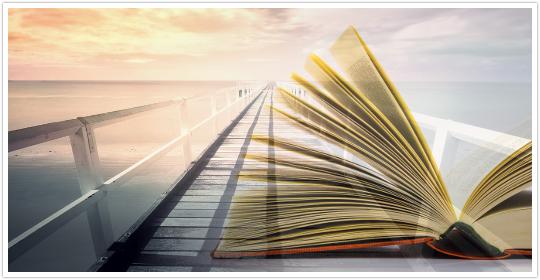 本を読んでFX取引を勉強するイメージ
